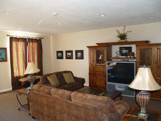 Lounge media room