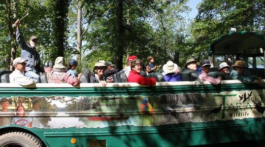 open-air-bus