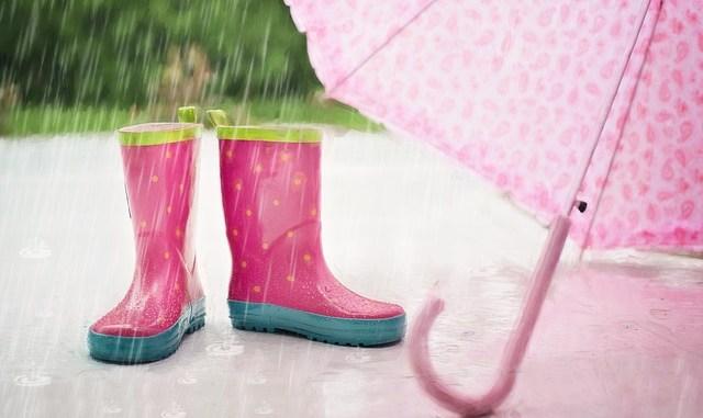 Météo Tarbes. pluies, averses et orages au menu samedi
