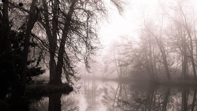 Météo Tarbes. brouillards, léger soleil et 6 degrés mardi après midi