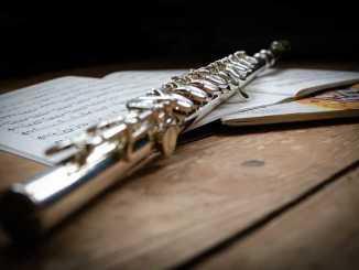Orchestre à l'école : les progrès de la classe de CM1 de Tarbes sont flagrants