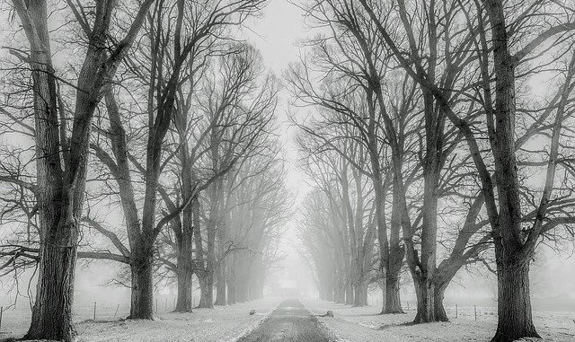 Météo Tarbes, Un vendredi froid avant un samedi sous la neige