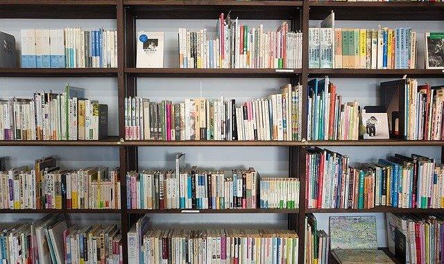 Les bibliothèques deviennent gratuites à Tarbes ou Lourdes