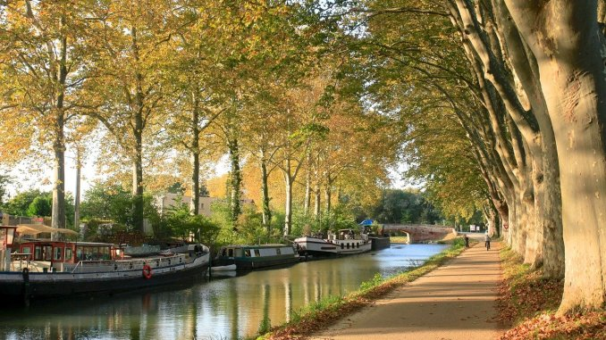 Canal du Midi, marque commerciale