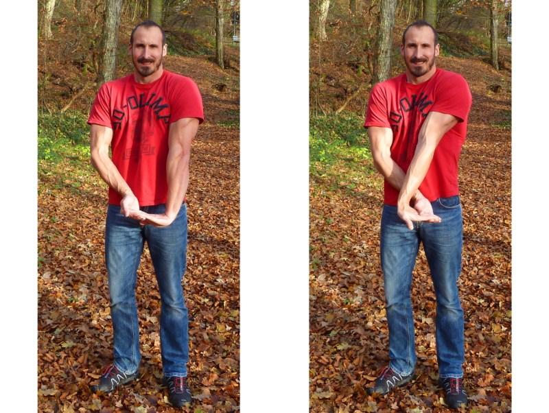 Dehenen der Finger- & Handgelenkbeuger