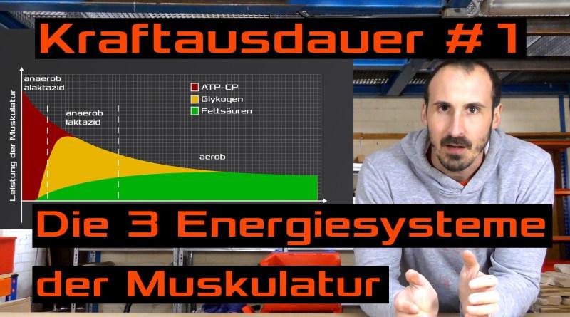 Kraftausdauer #1 - Die 3 Energiesysteme der Muskulatur