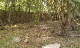 Na śmietniku pod murem cmentarza pełno jest odpadów z zakładów kamieniarskich / fot. www.targowek.to