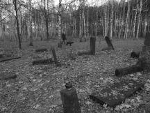 Cmentarz Żydowski na Targówku