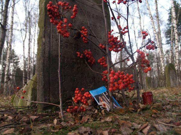 Cmentarz Żydowski na Targówku / fot. targowek.info