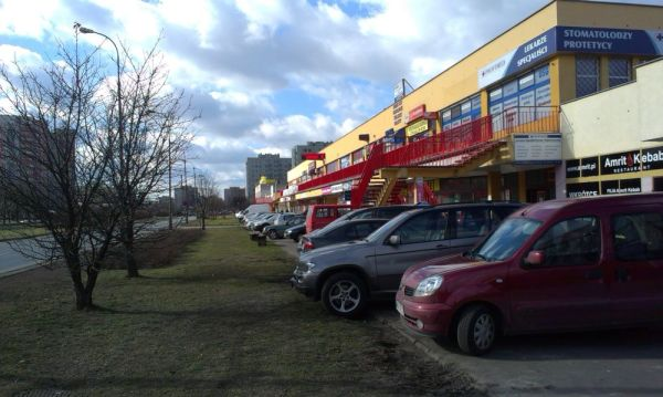 Niektórym nie starcza chodnika, więc parkują na trawniku / fot. targowek.info