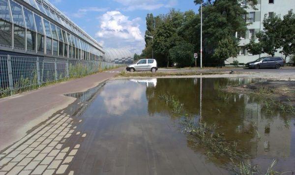 Kałuża w pobliżu Trasy Toruńskiej zalewa chodnik i wdziera się na ścieżkę rowerową / fot. targowek.info