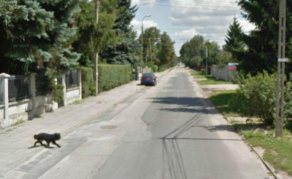 Lewinowska na pierwszym odcinku jest pokryta wielokrotnie łatanym asfaltem / fot. Google Maps