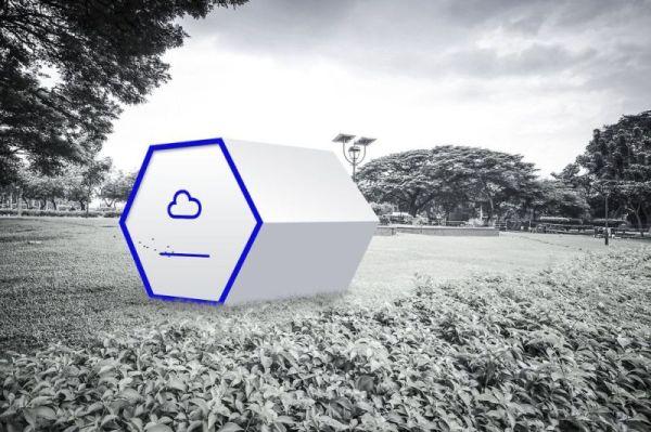 Projekt Invisibee / fot. Futuwawa