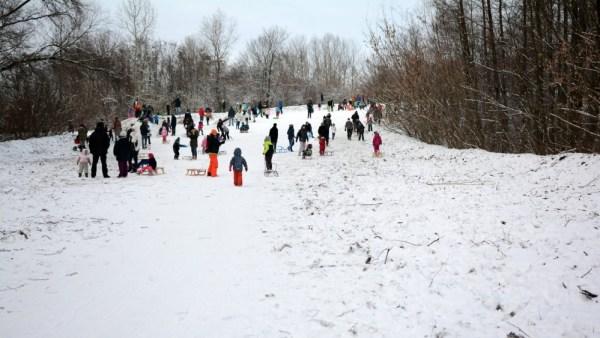 Górka w Lesie Bródnowskim w sobotę 16 stycznia. Zdjęcie od czytelnika Sebastiana
