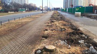 bud-metr-kondratowicza-drzewa