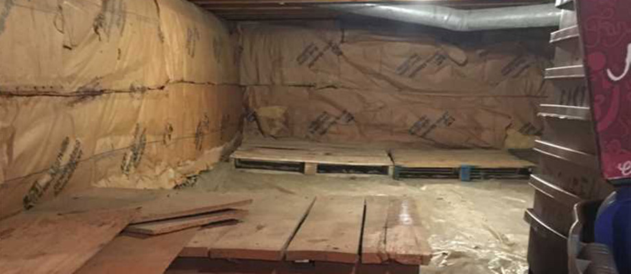 before crawl space cleaning