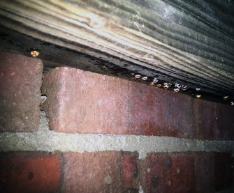 damp wood in crawl space