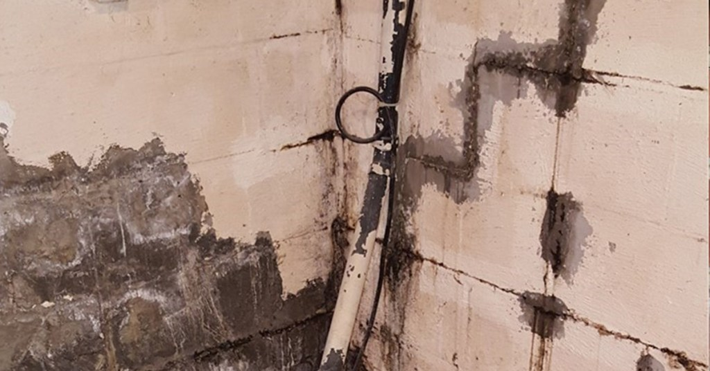 wall cracking and mold problems