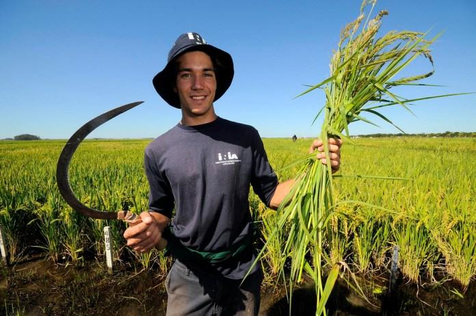 Genç Çiftçi Desteği için yarın son gün!