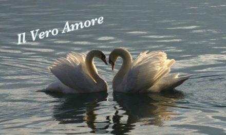 Il Vero Amore ….. pensiero di Thich Nhat Hanh