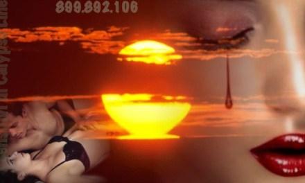 Il numero dell'amore a costo modico 899.892.106