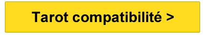Tarot compatibilité