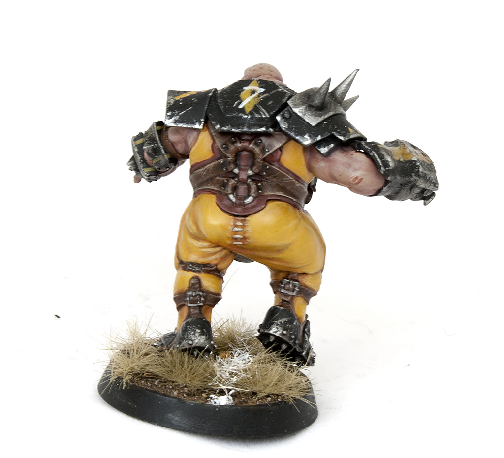 blood bowl ogre back - tartan paint 1024