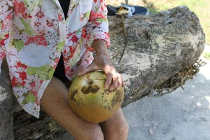 Lynda Lee and the jelly coconut