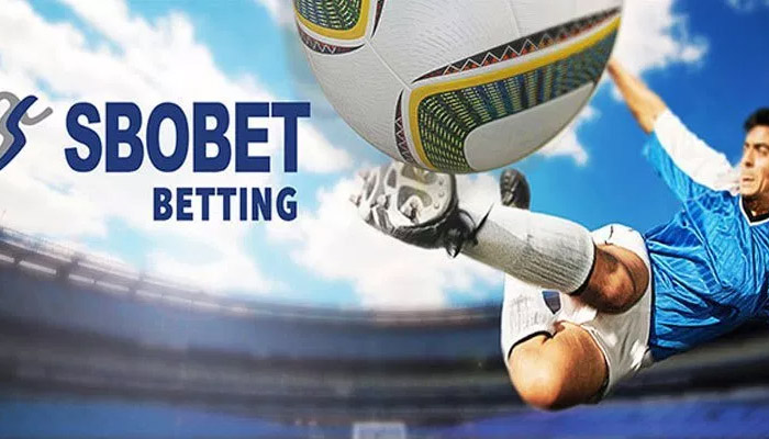 Cara Bermain Judi Bluebet Financial