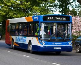 290Bus-Tarves