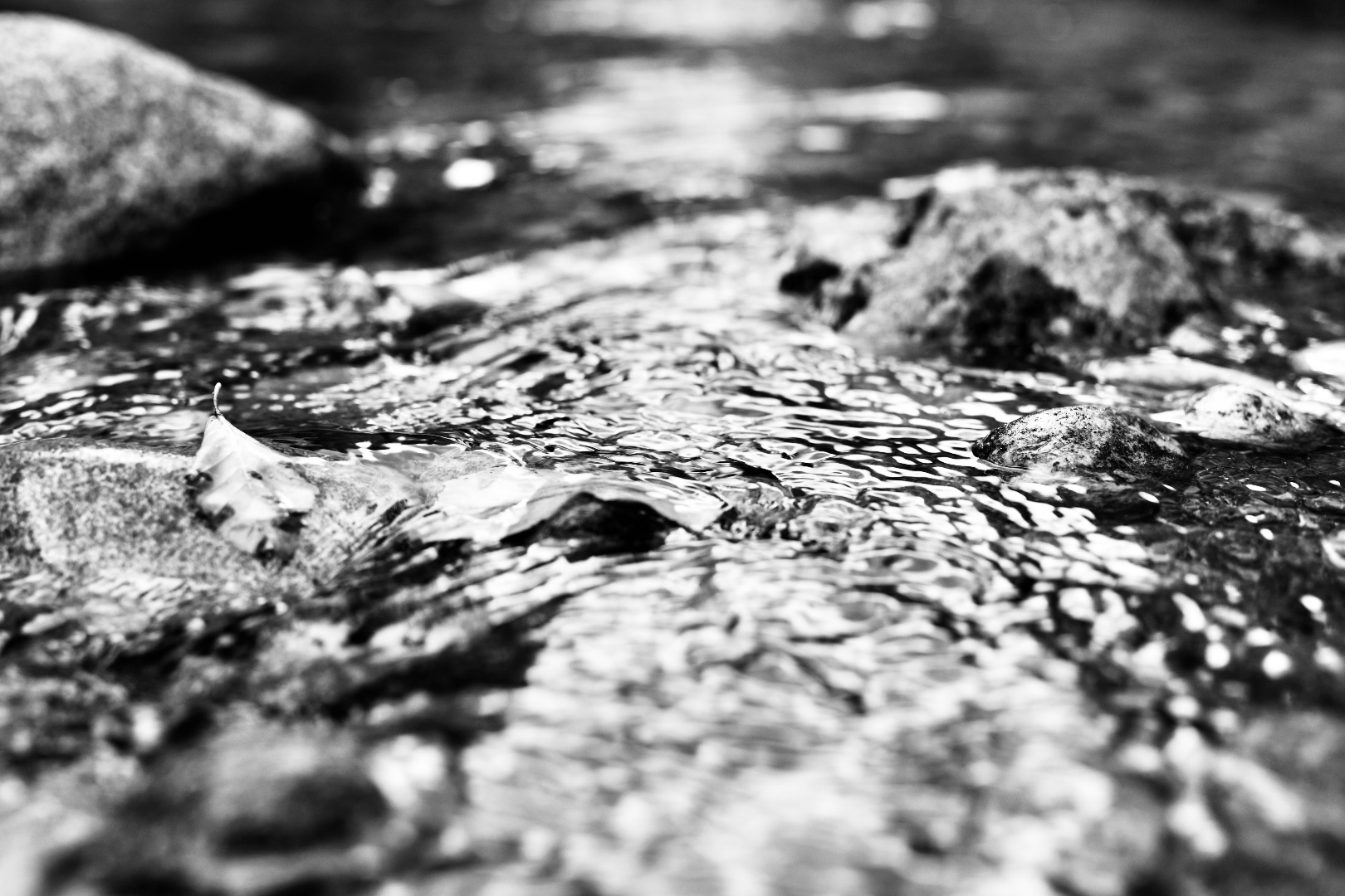 Light reflecting off of river water in black and white. 2021. Taryn Okesson. Digital Photography. White Mountain National Forest, New Hampshire.