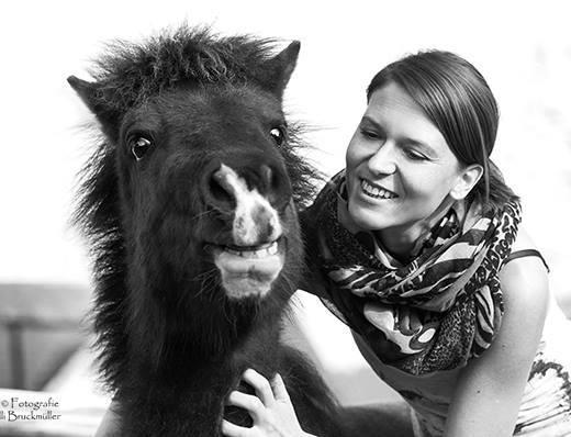 Pferde verstehen, Achtsamkeit