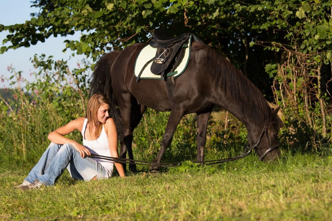 Pferdetraining alternativ