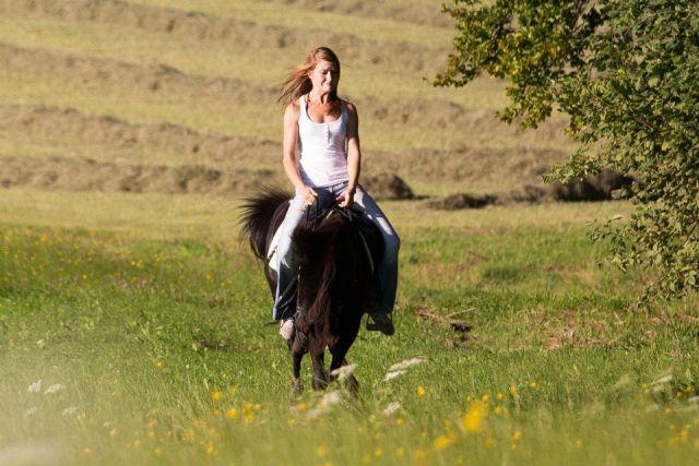 Sitzkorrektur Centered Riding
