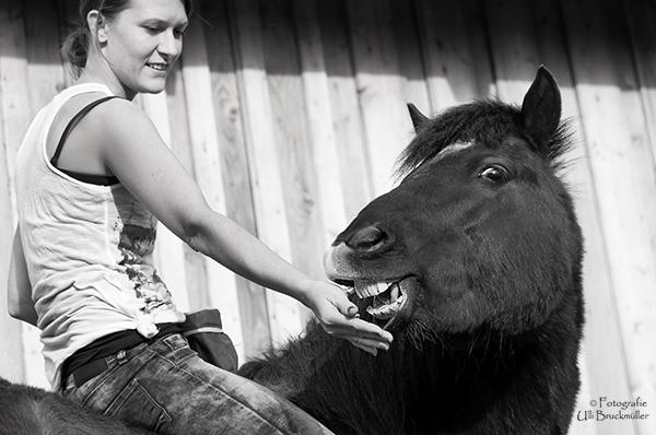 Dein Pferd hat keine guten Eigenschaften!