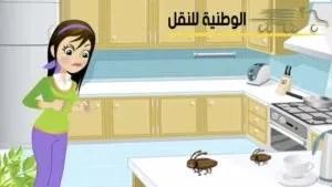 مكافحة الحشرات بالرياض