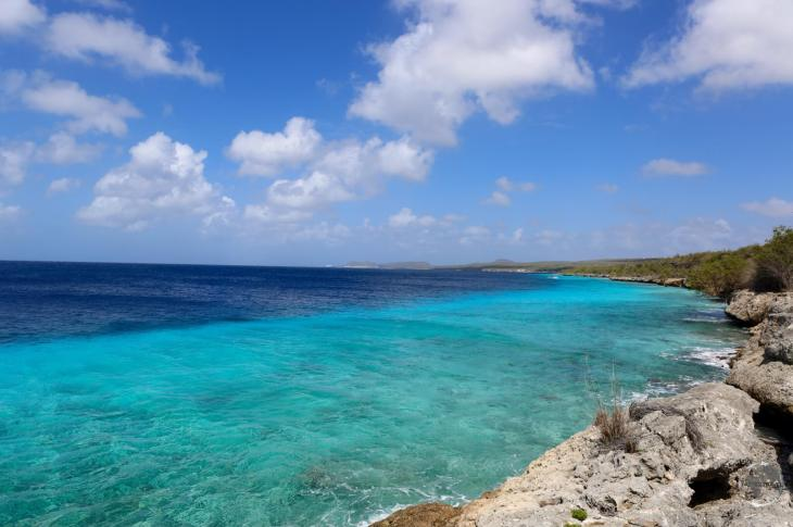 Bonaire Travel Guide: A reef runs along the entire Leeward coast with a dramatic drop off just offshore