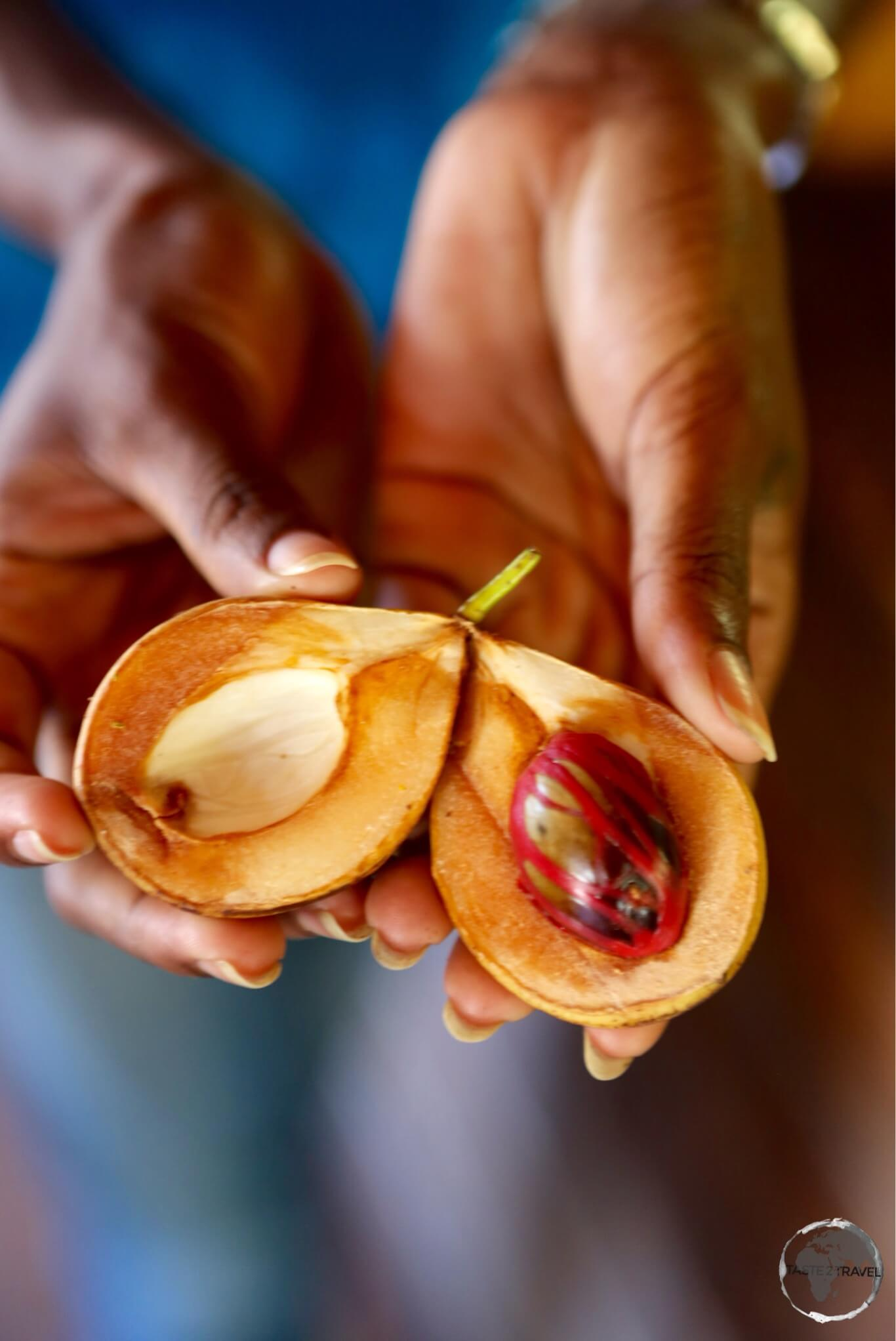 The island's number one export – nutmeg.