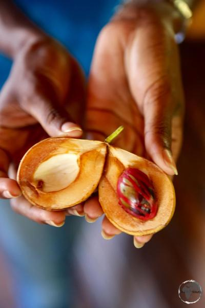 Nutmeg is Grenada's #1 export.