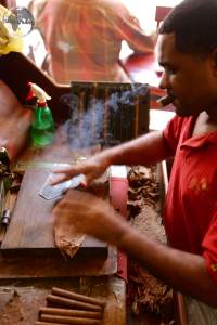 Cigar rolling in Boutique del Fumador
