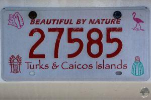 TCI License Plate