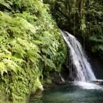 Cascade aux Ecrevisses at the Guadeloupe National Park.