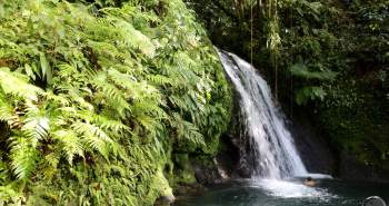 Cascade aux Ecrevisses at the Guadeloupe National Park.