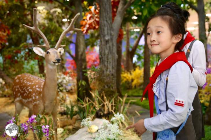 School girls explore a nature exhibit at the DPRK Science & Technology complex in Pyongyang.