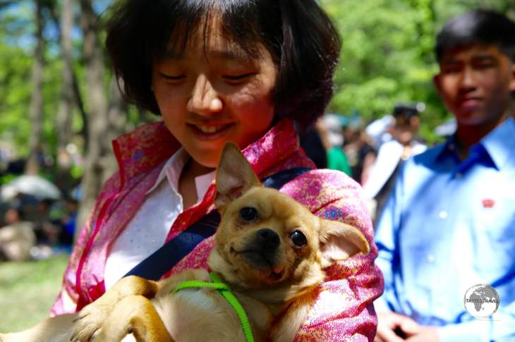Moran Hill is the place Pyongyang residents flock to during the May Day holiday to picnic, dance, sing Karaoke or spend time relaxing with their favourite companions.