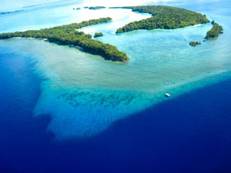 Blue Corner - one of my dive sights on Palau.