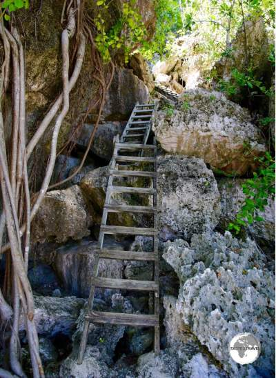 Entrance to Great Cave on Cayman Brac.