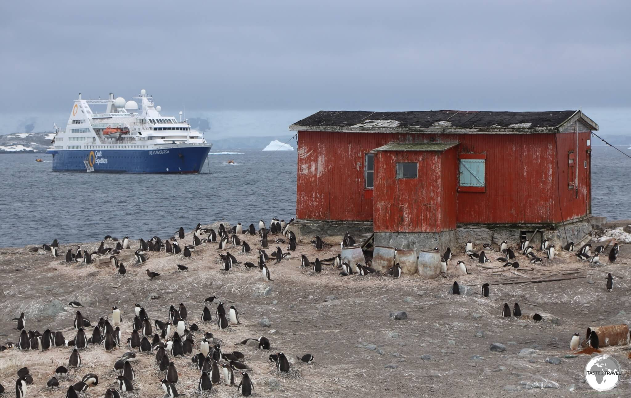 An Argentine refuge on D'Hainaut Island is surrounded by a Gentoo penguin breeding colony.
