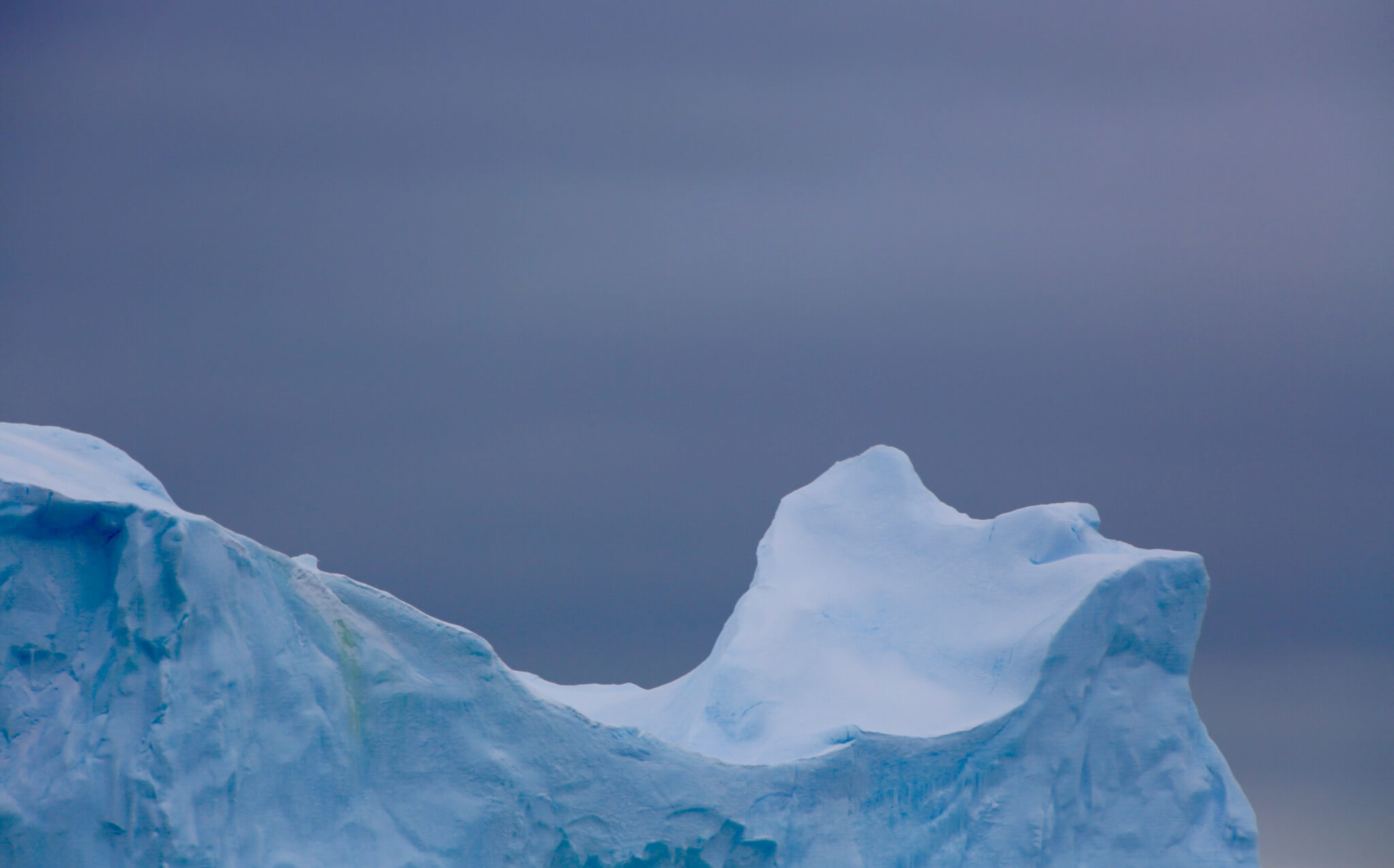 The waters surrounding Adelaide Island are full of large icebergs and smaller ice floes.