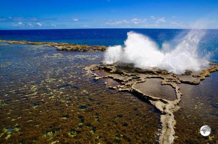 Mapu'a Vaea -the blow holes on the south coast.